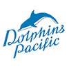 Dolphins Pacific